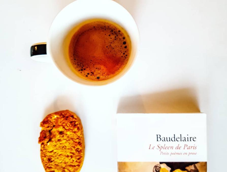 Un hémisphère dans une chevelure de Charles Baudelaire